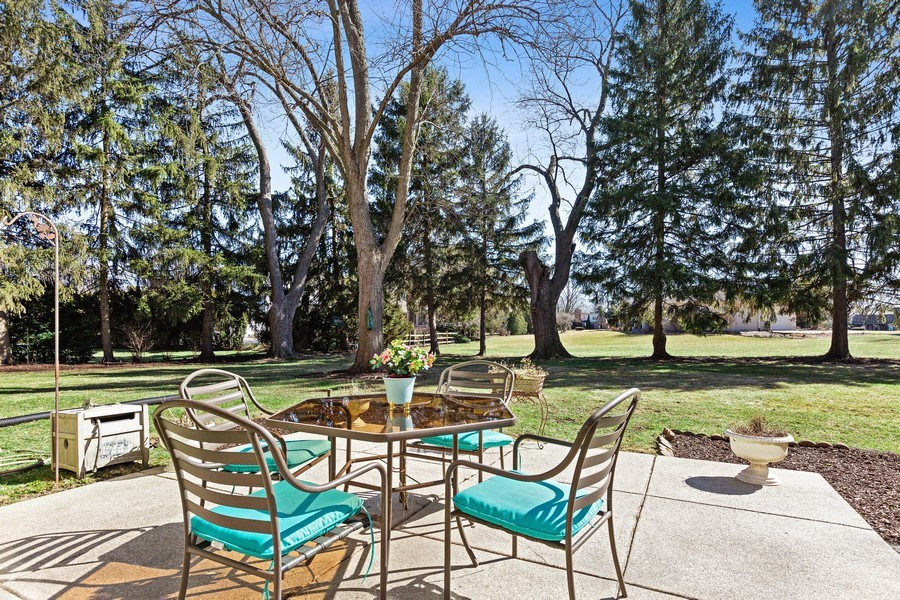 Real Estate Photography - 9 Sheffield Lane, Oak Brook, IL, 60523 - Patio