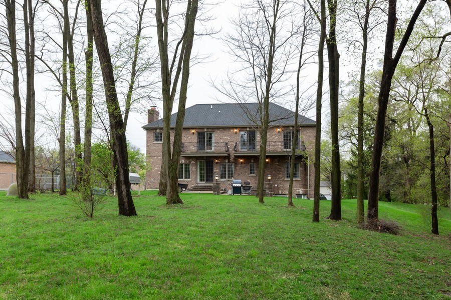 Real Estate Photography - 8179 Wolf Road, La Grange, IL, 60525 - Rear View