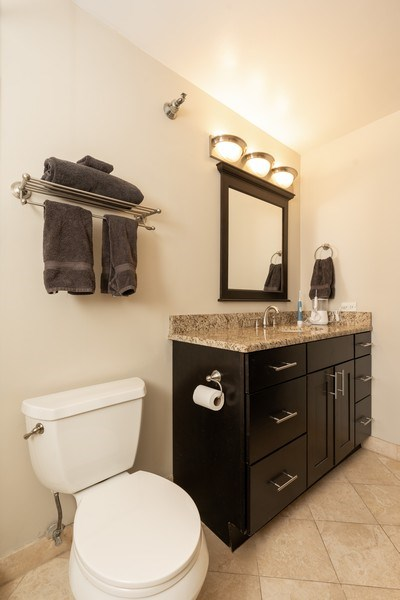 Real Estate Photography - 1309 N Wells, #506, Chicago, IL, 60610 - Master Bathroom