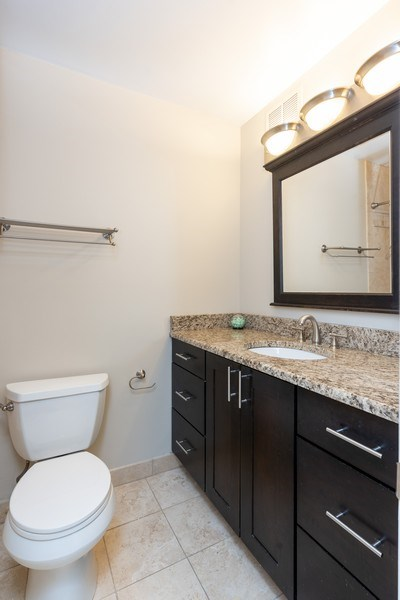 Real Estate Photography - 1309 N Wells, #506, Chicago, IL, 60610 - 2nd Bathroom