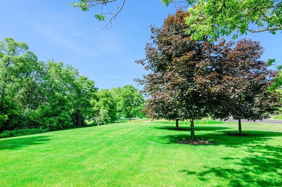 Real Estate Photography - 462 W Oakwood Dr, Barrington, IL, 60010 - Back Yard
