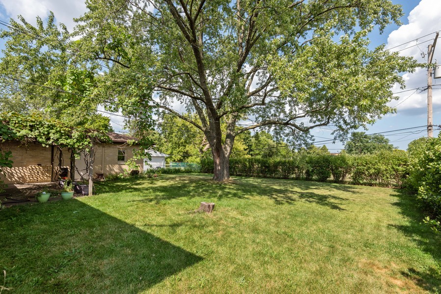 Real Estate Photography - 23 Michael Manor, Glenview, IL, 60025 - Back Yard