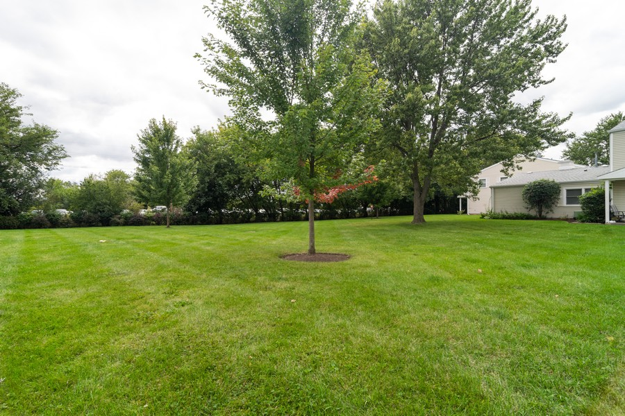 Real Estate Photography - 184 Betty Court #B, Bartlett, IL, 60103 - Front Yard