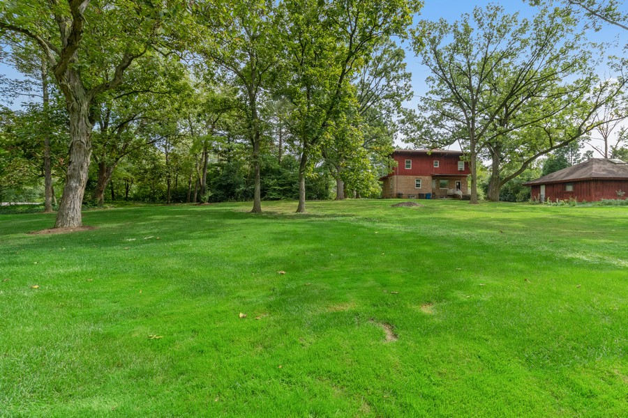 Real Estate Photography - 7835 W. McCarthy Rd., PALOS PARK, IL, 60464 - Back Yard