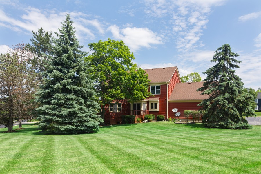 Real Estate Photography - 23907 Lancaster Ct, Deer Park, IL, 60010 - Rear View