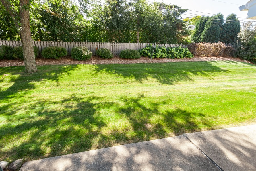 Real Estate Photography - 11919 W Locust St, Wauwatosa, WI, 53222 - Beautiful view from south facing patio