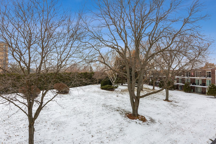 Real Estate Photography - 5540 Walnut Ave, 7C, Downers Grove, IL, 60515 - View