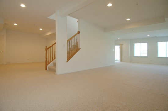 Real Estate Photography - 1040 Orchard Pond Court, Lake Zurich, IL, 60047 - Lower Level
