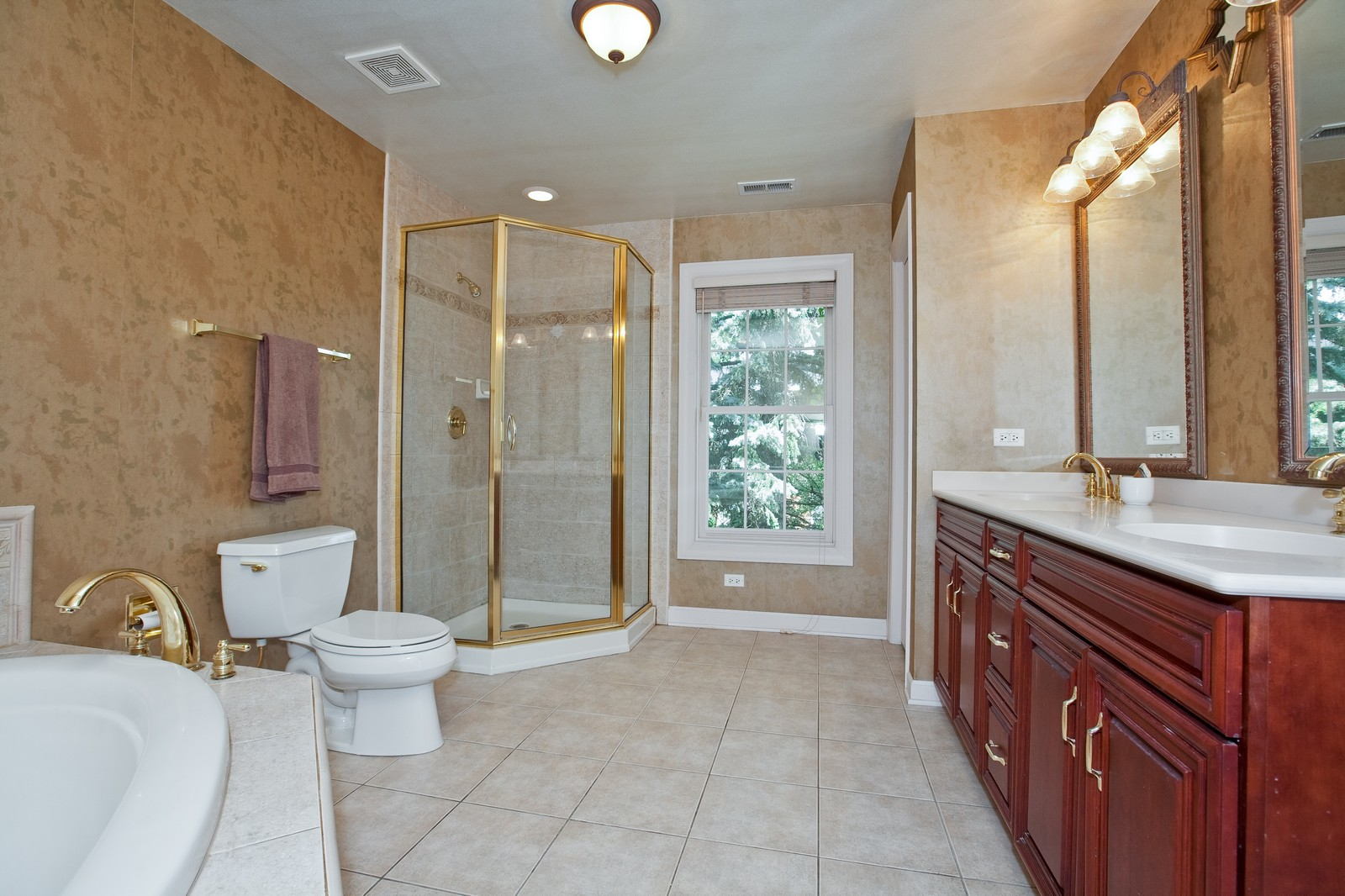 Real Estate Photography - 444 Lynn Ct, Clarendon Hills, IL, 60514 - Master Bathroom