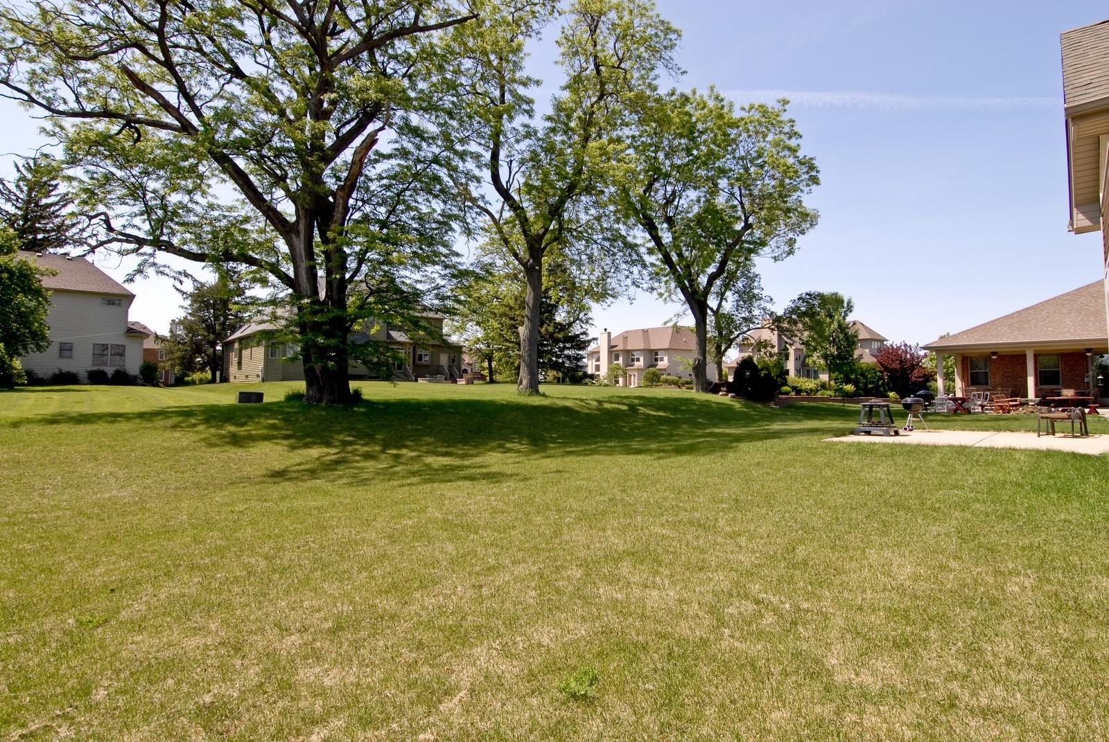 Real Estate Photography - 13232 Birdseye Court, Plainfield, IL, 60585 - Back Yard