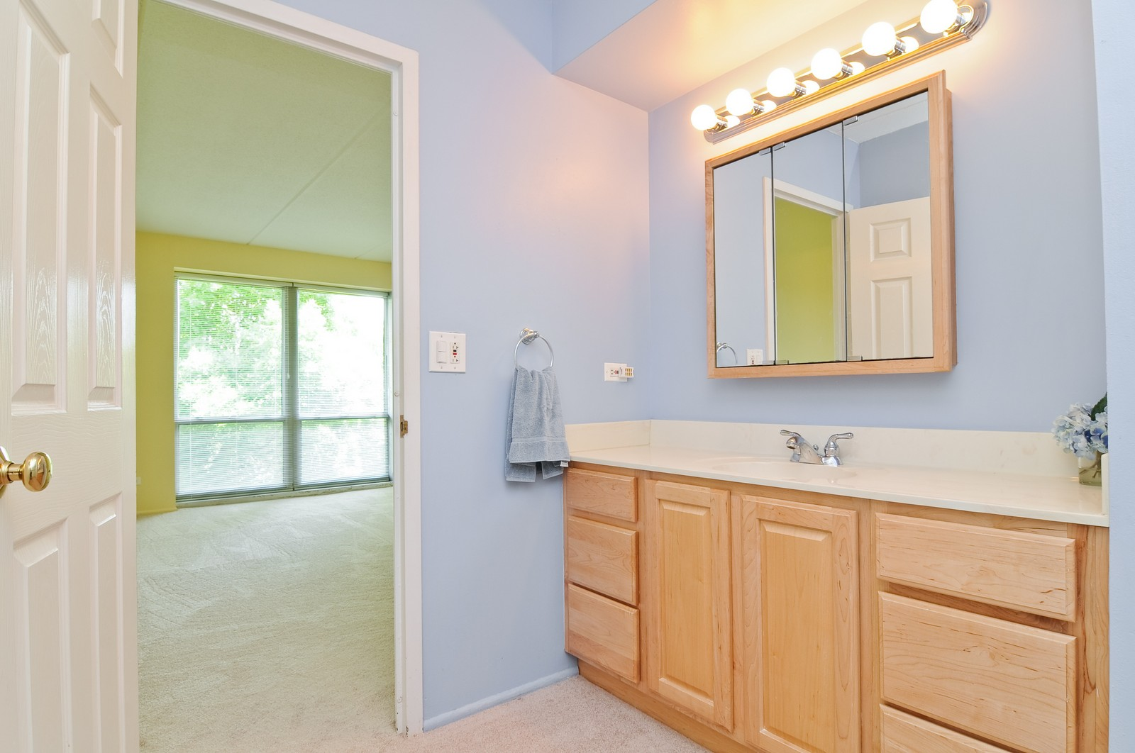 Real Estate Photography - 1301 N. Western, 329, Lake Forest, IL, 60045 - Master Bathroom