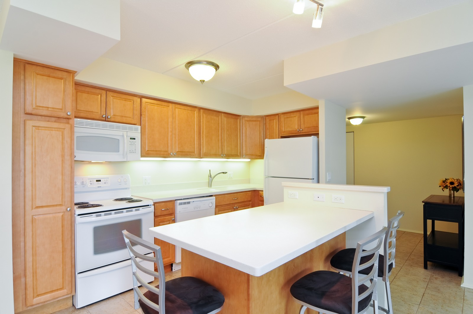 Real Estate Photography - 1301 N. Western, 329, Lake Forest, IL, 60045 - Kitchen
