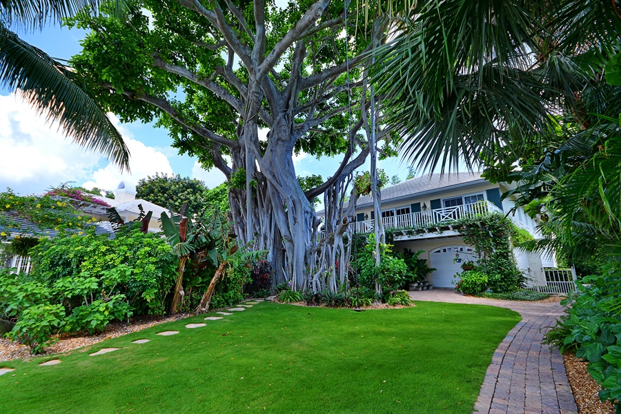 Real Estate Photography - 400 Caribbean, Palm Beach, FL, 33480 - Back Yard