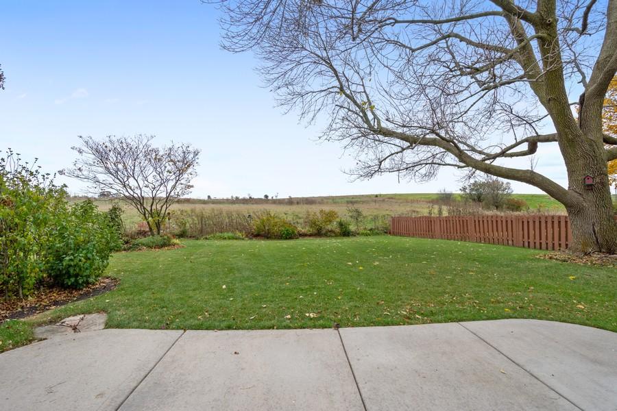 Real Estate Photography - 1869 Burr Ridge Drive, Hoffmann Estates, IL, 60192 - Back Yard