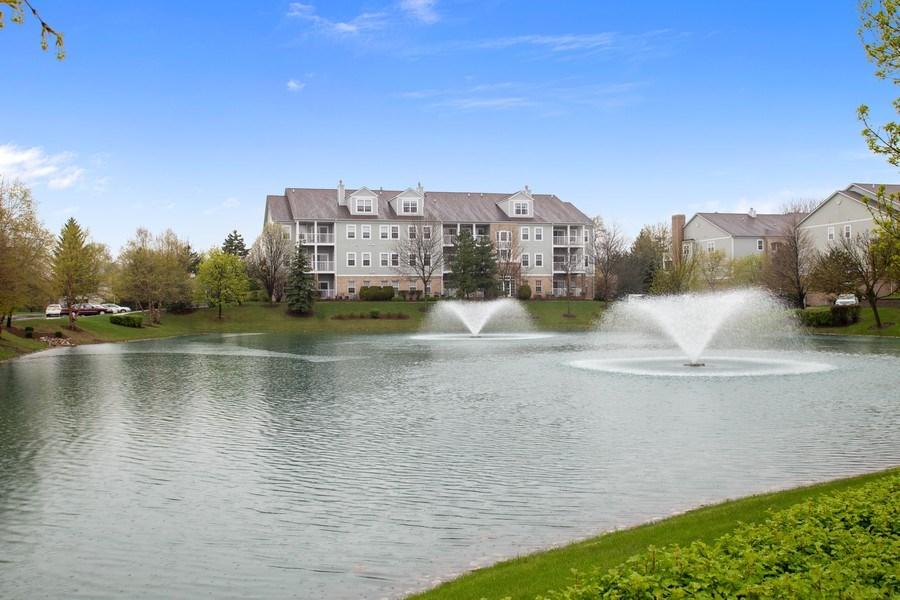 Real Estate Photography - 1283 W Lake St, #203, Addison, IL, 60101 - Rear View