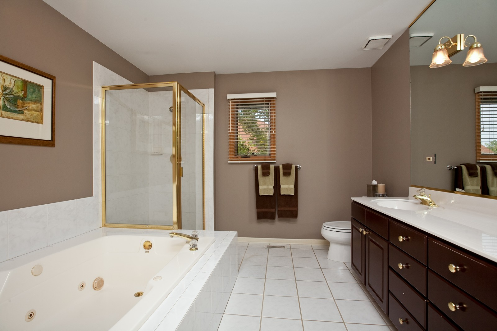 Real Estate Photography - 1031 W. 119th St, Lemont, IL, 60439 - Master Bathroom
