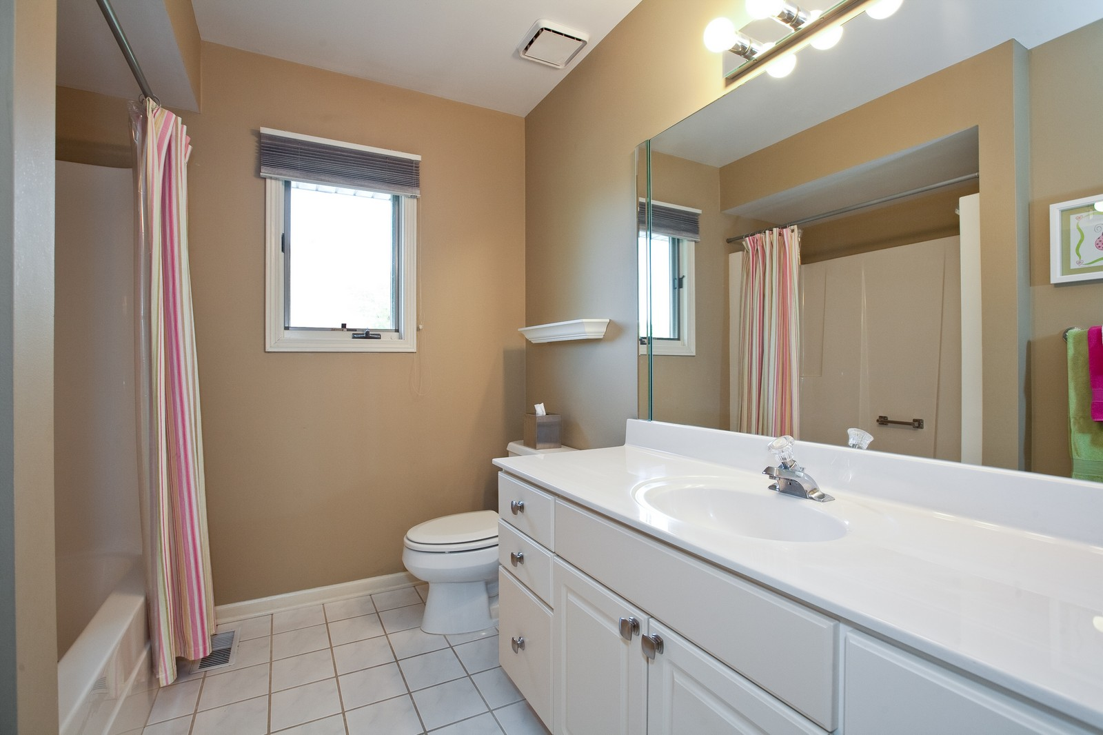 Real Estate Photography - 1031 W. 119th St, Lemont, IL, 60439 - Bathroom
