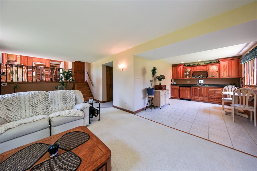 Real Estate Photography - 10909 Chaucer, Willow Springs, IL, 60480 - Lower Level