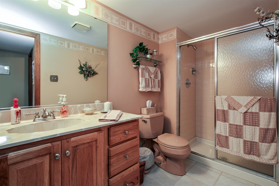 Real Estate Photography - 10909 Chaucer, Willow Springs, IL, 60480 - Bathroom