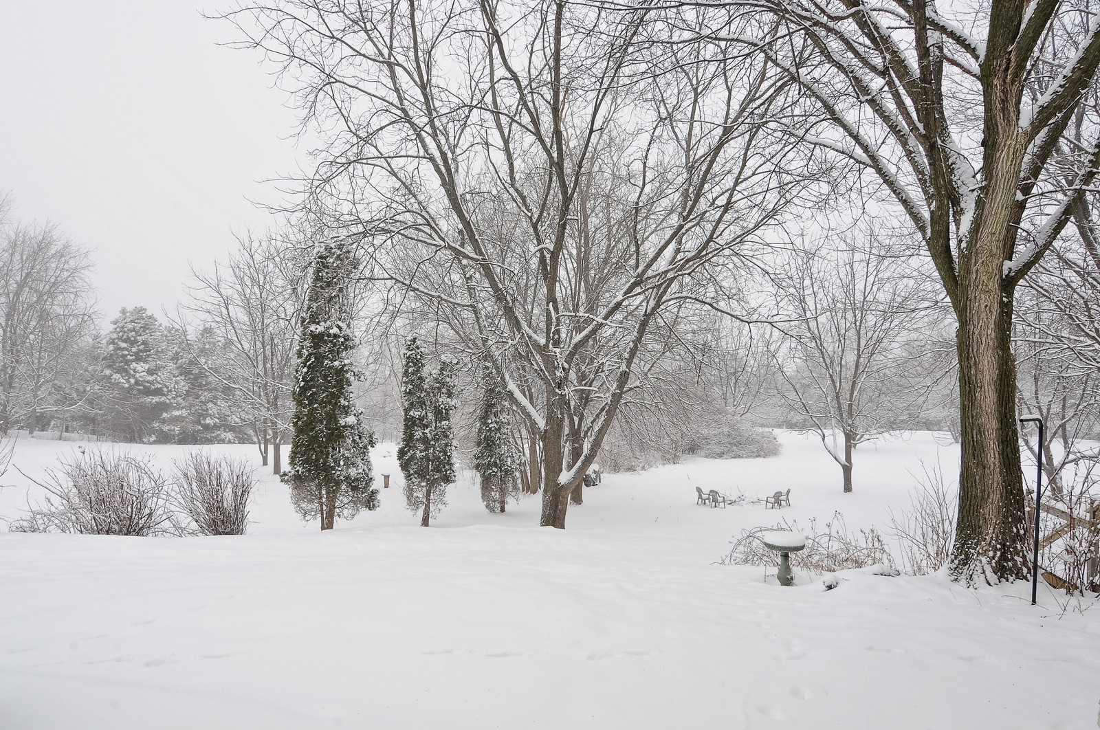Real Estate Photography - 5171 Hilltop Ave N, Lake Elmo, MN, 55042 - Back Yard