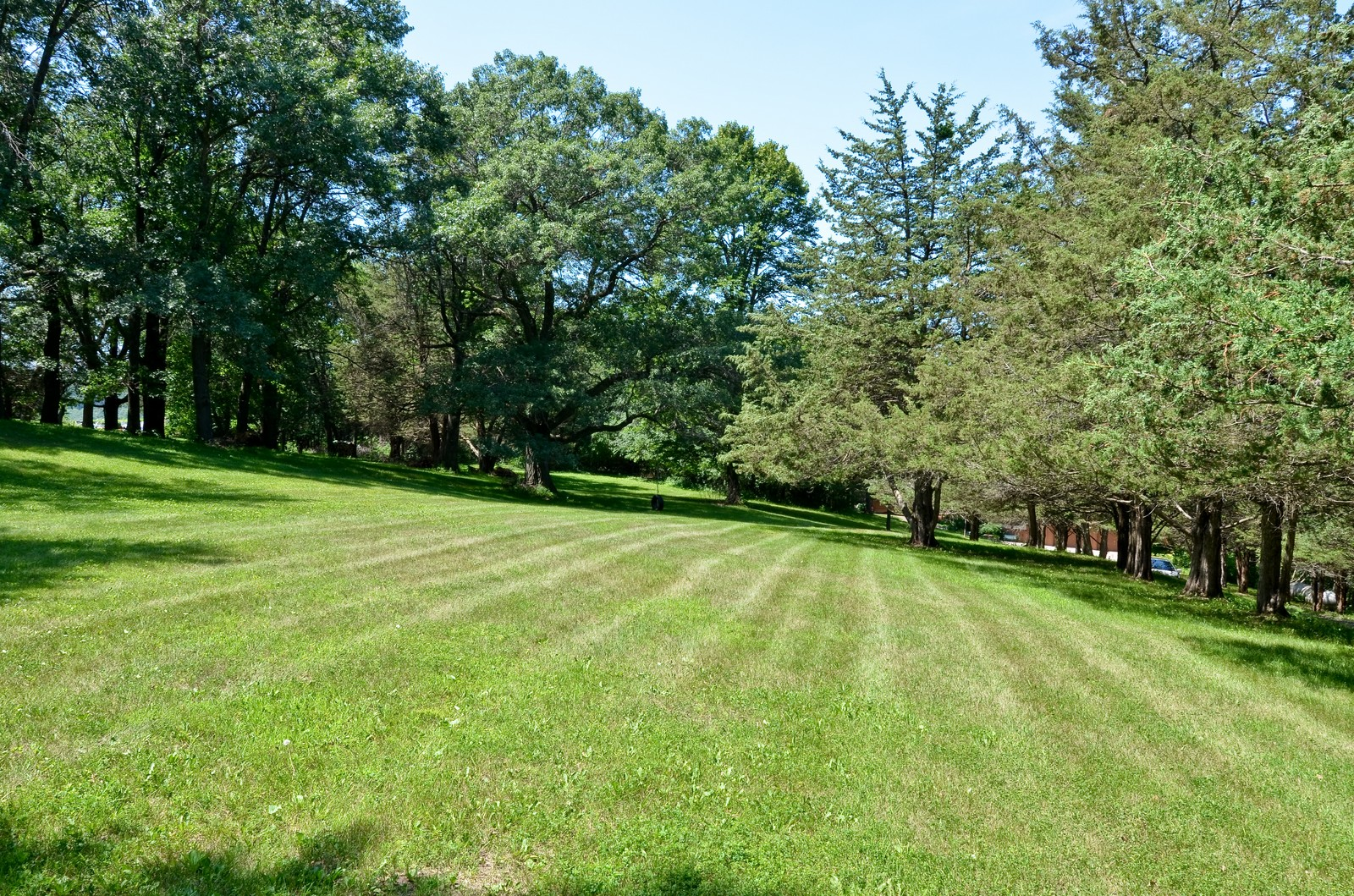 Real Estate Photography - N8885 1250th Street, River Falls, WI, 54022 - Back Yard