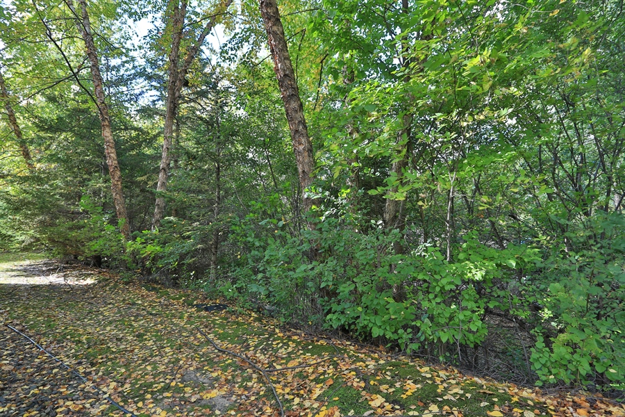 Real Estate Photography - 5040 Malibu Drive, Edina, MN, 55436 - Back Yard