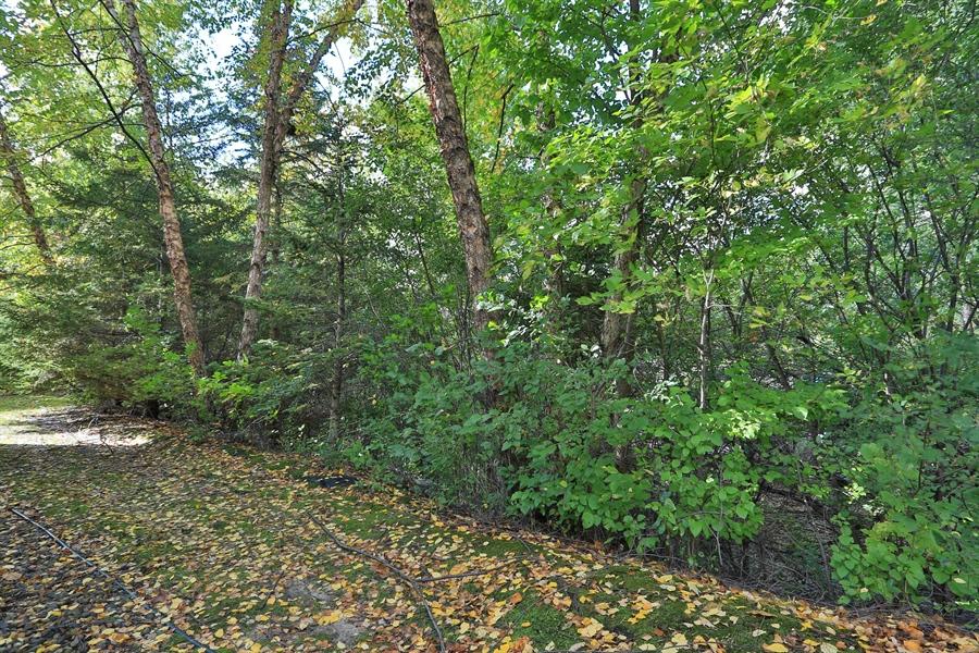 Real Estate Photography - 5040 Malibu Drive, Edina, MN, 55436 - Back Yard