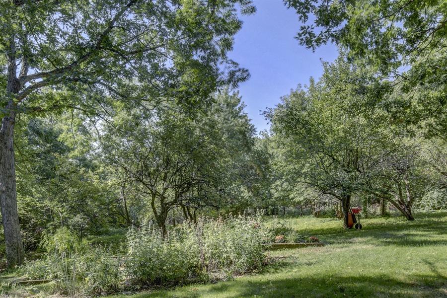 Real Estate Photography - 12529 Danbury Way, Rosemount, MN, 55068 - Back Yard