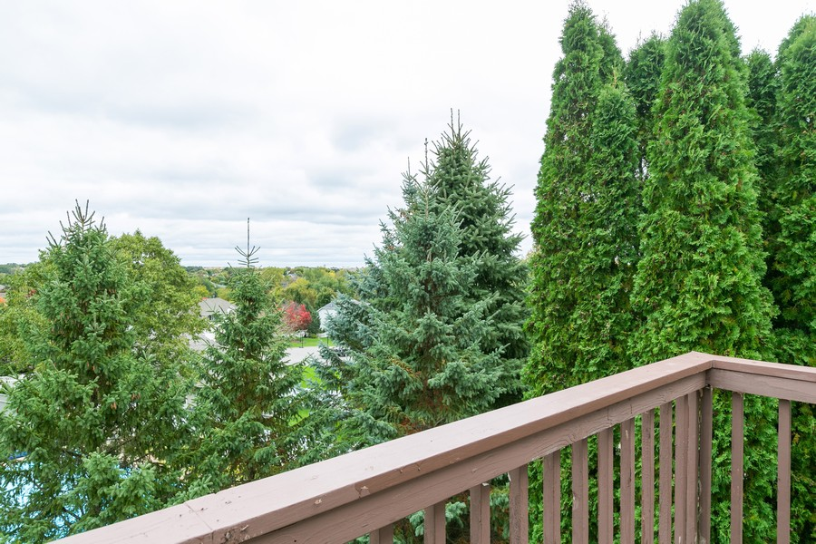 Real Estate Photography - 9046 Edinburgh Ln, Woodbury, MN, 55125 - Master bedroom balcony view