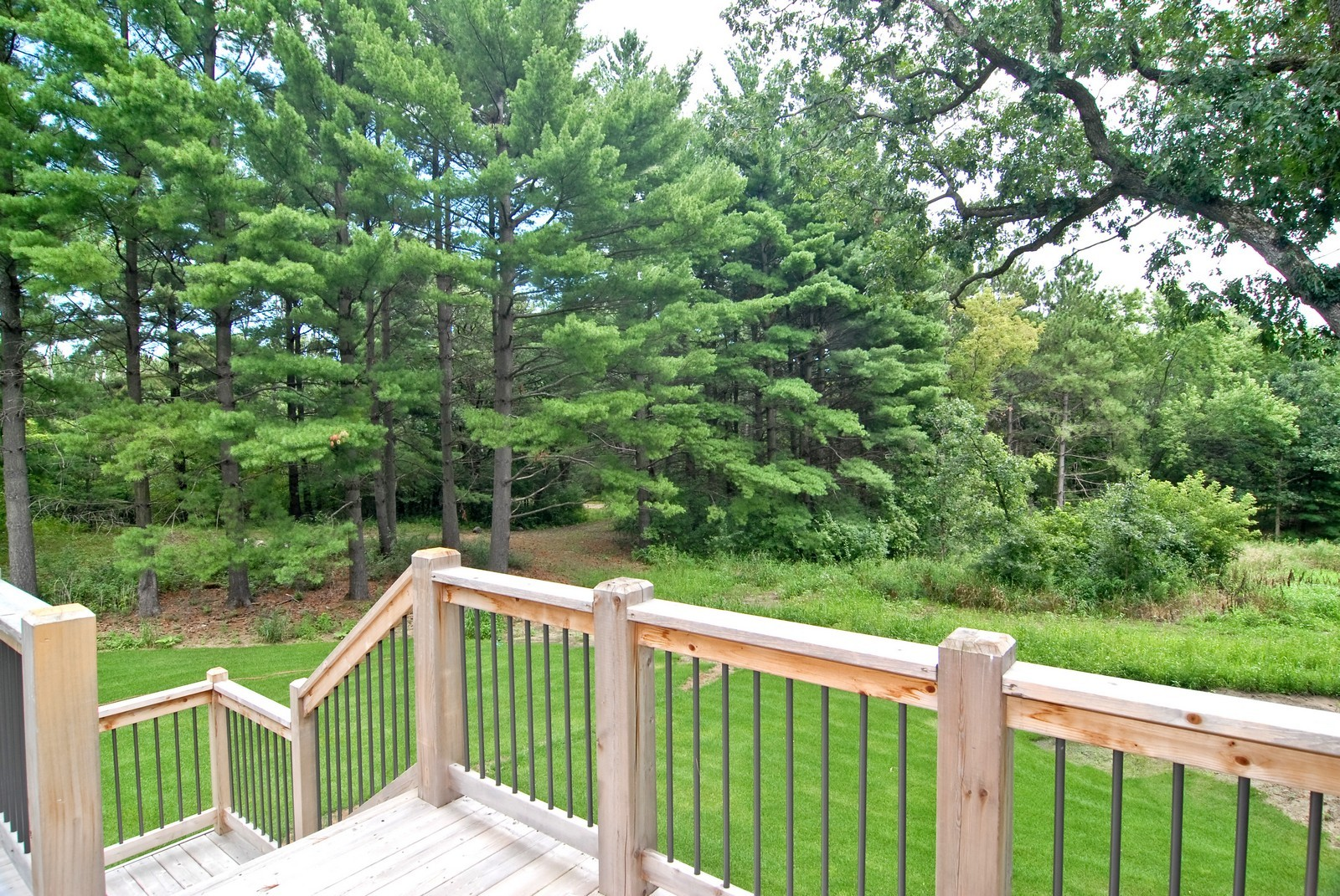 Real Estate Photography - 13220 24th Street North, West Lakeland, MN, 55082 - Back Yard