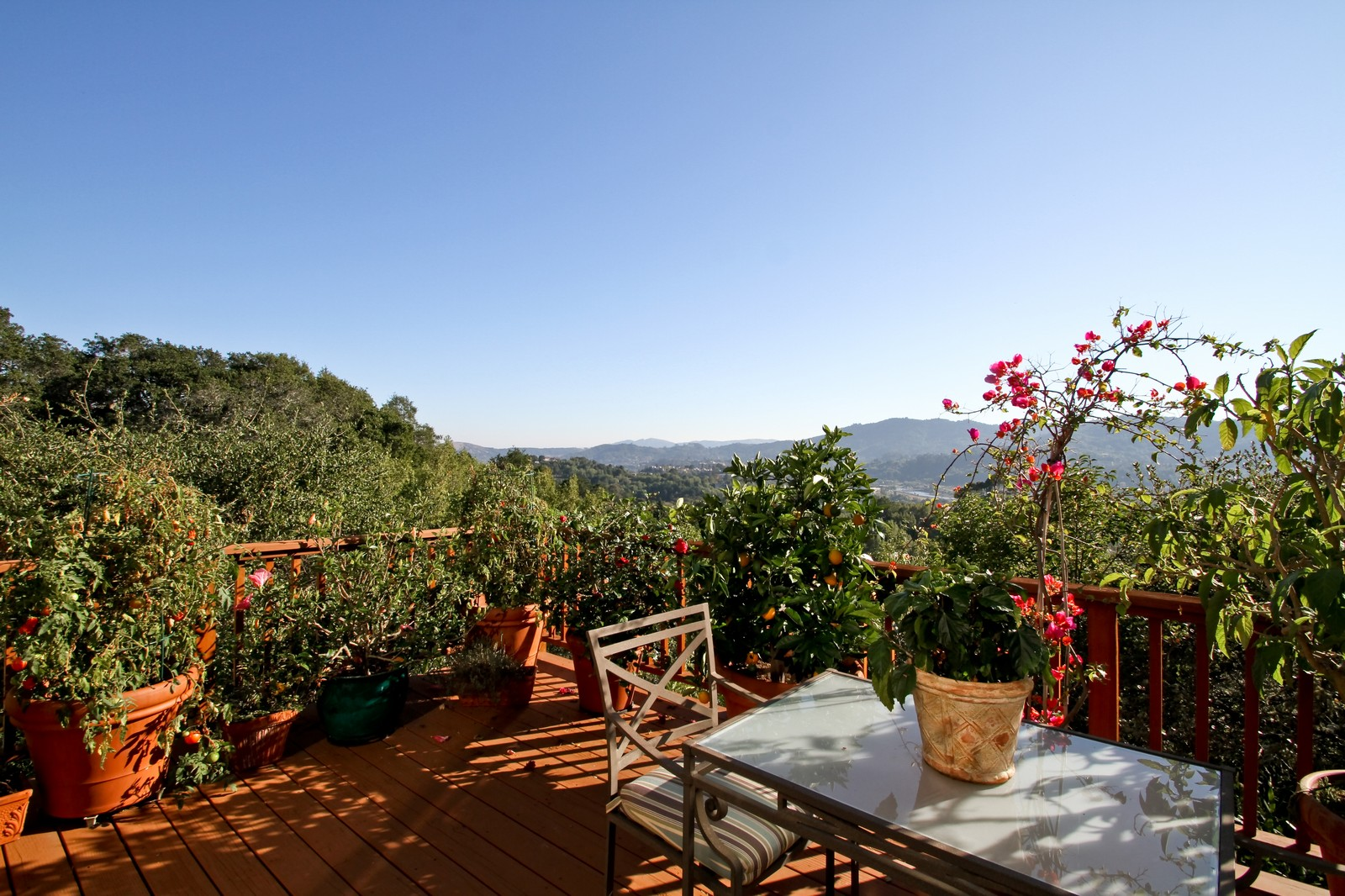 Real Estate Photography - 73 Upper Toyon Drive, Kentfield, CA, 94904 - View