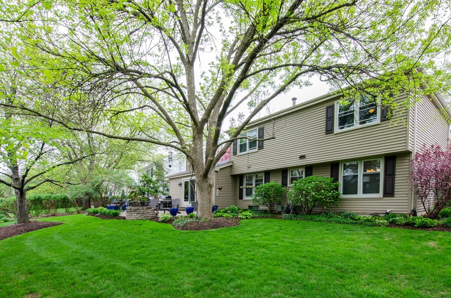 Real Estate Photography - 2609 Old Mill Ln, Rolling Meadows, IL, 60008 - Rear View
