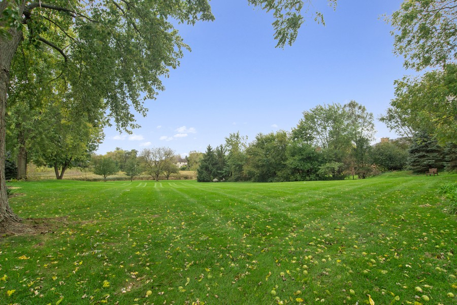 Real Estate Photography - 108 Haman Road, Inverness, IL, 60010 - Back Yard