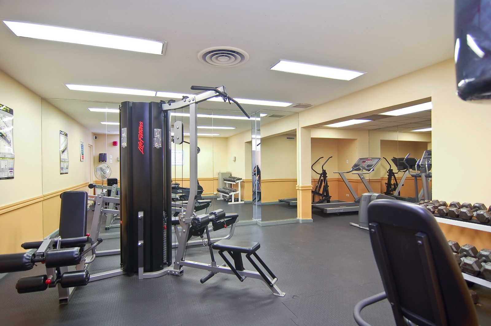 Real Estate Photography - 3950 N. Lake Shore Dr., 328E, Chicago, IL, 60613 - Exercise Room