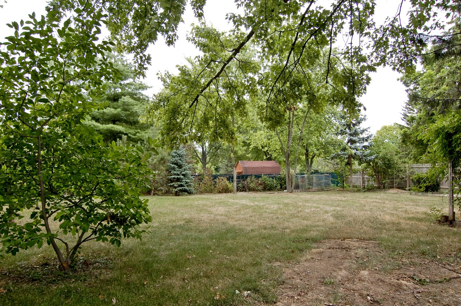 Real Estate Photography - 111 N. Dale, Prospect Heights, IL, 60070 - Back Yard