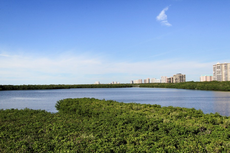 Real Estate Photography - 60 Seagate Drive, 705, Naples, FL, 34103 - View