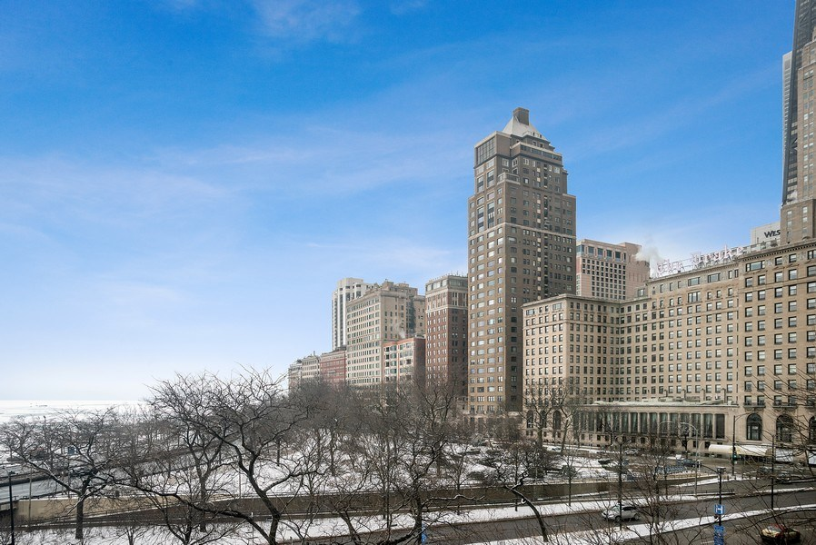 Real Estate Photography - 1040 N Lake Shore Dr, 5A, Chicago, IL, 60611 - View