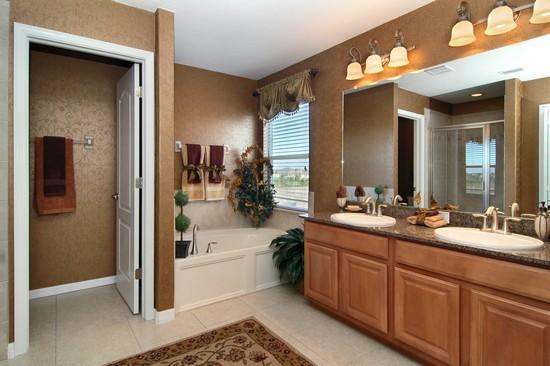 Real Estate Photography - Monaco Model, 11246 Flora Springs Dr, Riverview, FL, 33569 - Master Bathroom