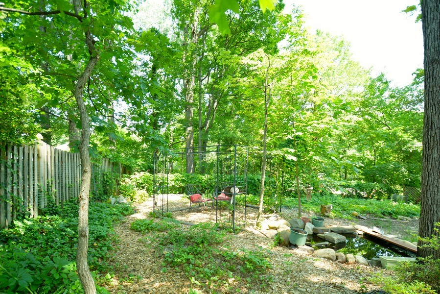 Real Estate Photography - 918 W. Timber Branch Pkwy., Alexandria, VA, 22302 - Back Yard