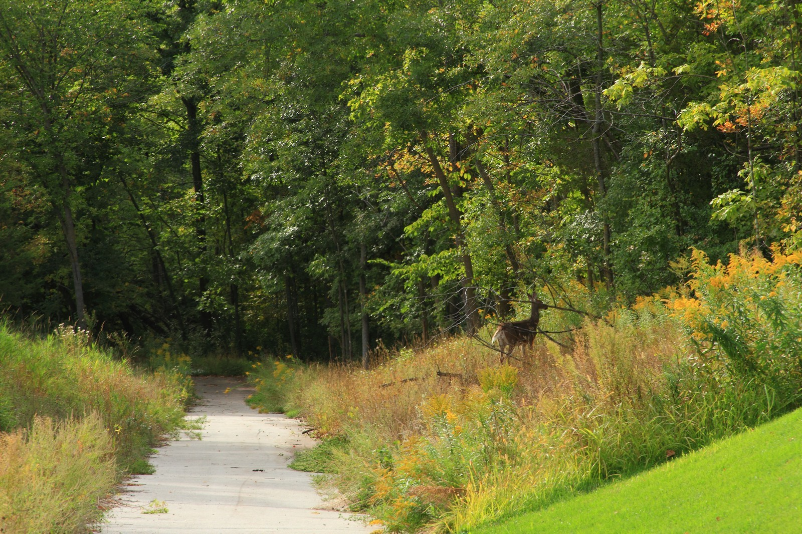 Real Estate Photography - 9627 Sky Lane, Eden Prairie, MN, 55347 - Location 1
