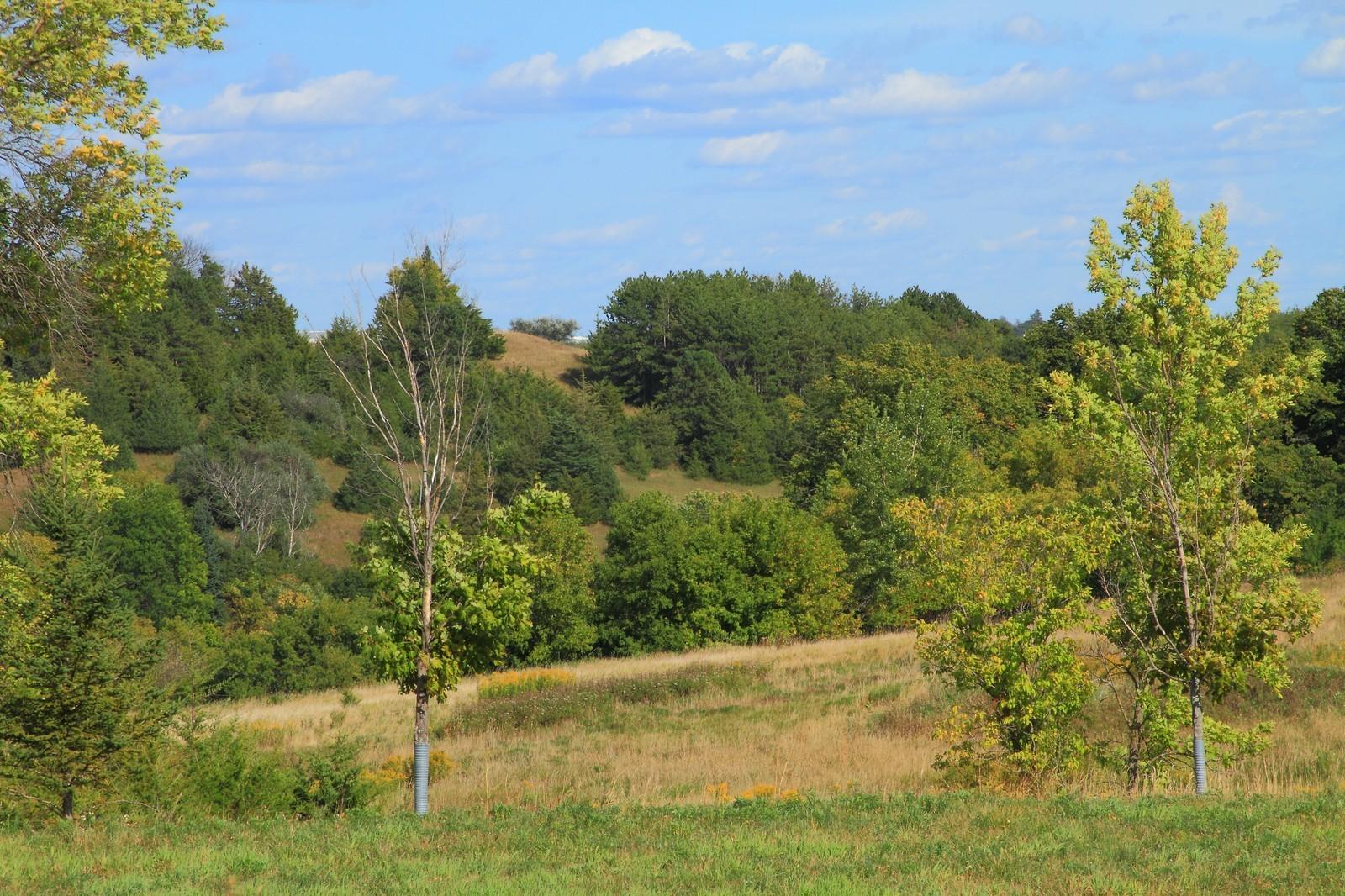 Real Estate Photography - 9627 Sky Lane, Eden Prairie, MN, 55347 - Location 5