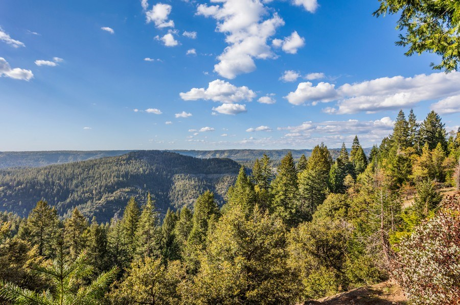 Real Estate Photography - 35835 Culberson Road, Alta, CA, 95701 - View