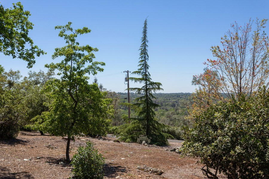Real Estate Photography - 3570 Skyview Dr, Auburn, CA, 95602 - View from the front of the property.
