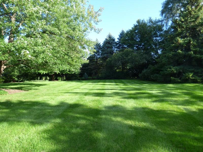 Real Estate Photography - 425 W. Sunset Rd., Barrington, IL, 60010 - Yard