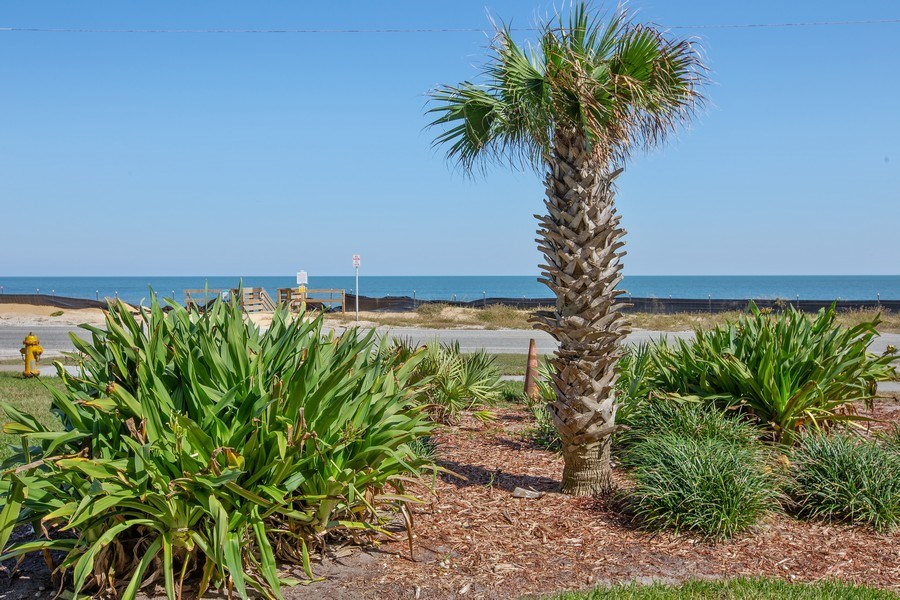 Real Estate Photography - 2730 Ocean Shore Blvd, Unit 107, Ormond Beach, FL, 32176 - Rear View