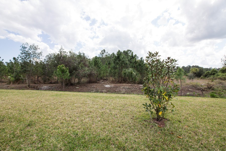 Real Estate Photography - 227 Grand Reserve Dr, Bunnell, FL, 32110 - Back Yard