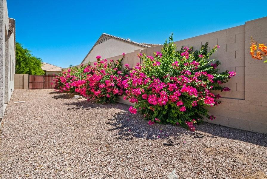 Real Estate Photography - 17685 W Eagle Dr, Goodyear, AZ, 85338 - Back Yard