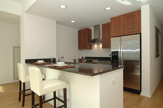 Real Estate Photography - 240 E Illinois, Unit 2603, Chicago, IL, 60611 - Kitchen