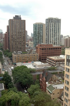 Real Estate Photography - 21 W Goethe, Unit 18G, Chicago, IL, 60610 - View