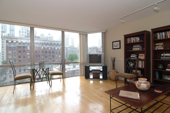 Real Estate Photography - 21 W Goethe, Unit 7G, Chicago, IL, 60610 - Living Room